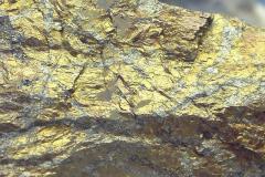 Metallikiilto (kuparikiisu)