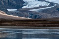 A-walk-at-the-glacier