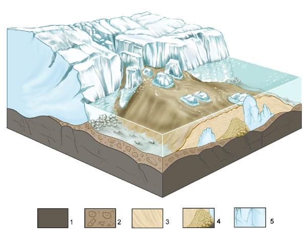 Terkkuja jääkaudelta! Tutustu Padvan jääkauden jälkeiseen hiekkadyynialueeseen
